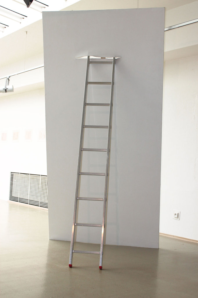 trans /attempted transcendency/, 300x150cm, acrylic on canvas, ladder, 2012